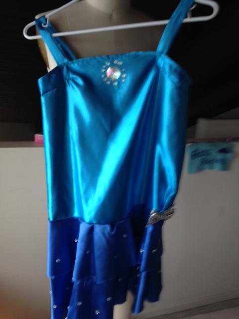 Blue Elsa Dress (2014)