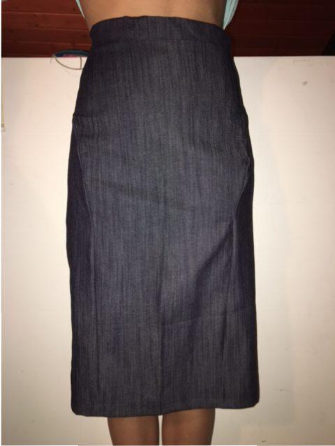 A line Pencil Skirt (2017)